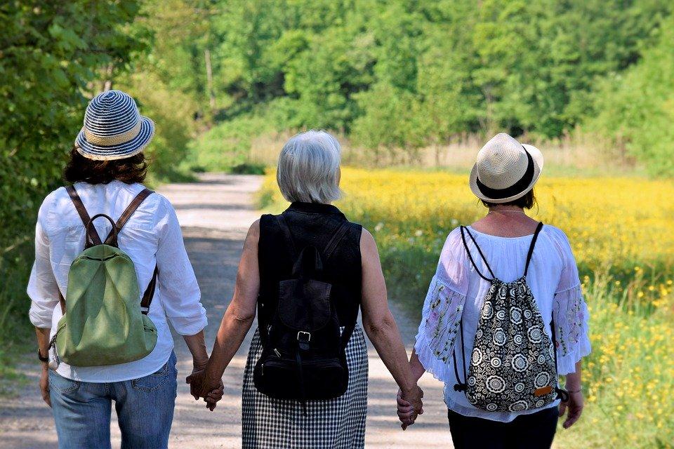 Lee más sobre el artículo La menopausia