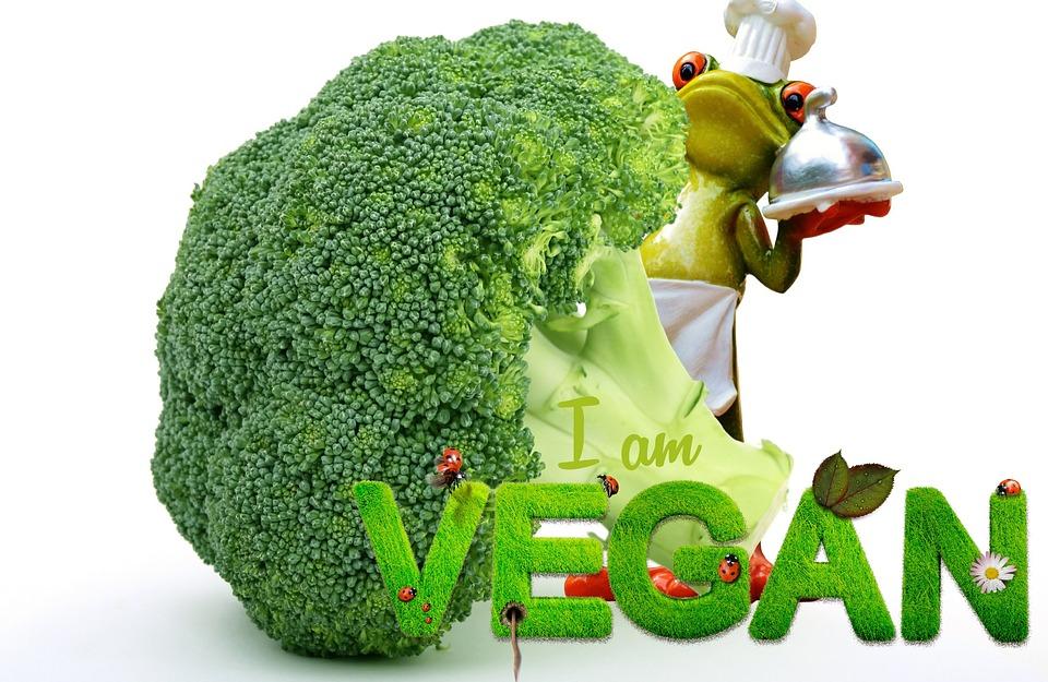 Lee más sobre el artículo Dietas Veganas y suplementación